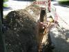 vsetky-fotky-s-kodaku-do-16-8-2009-1222.jpg